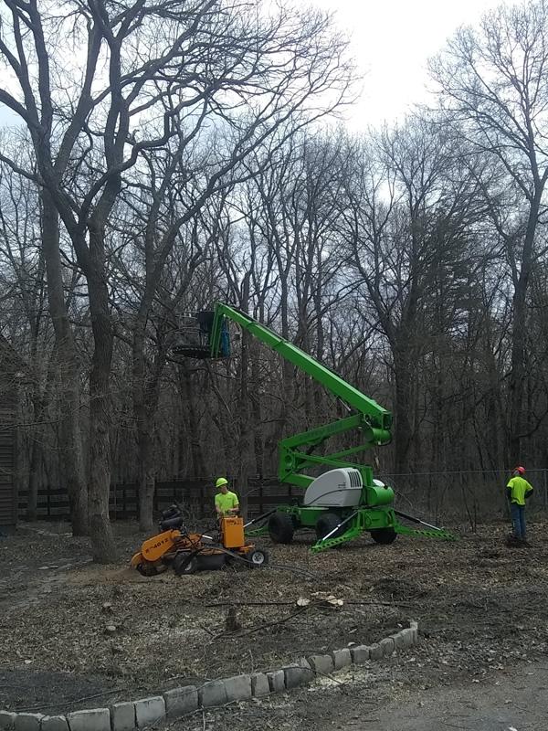 Lot Clearing Princeton MN