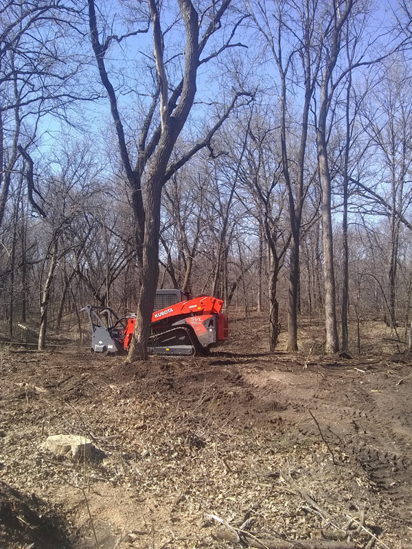 Lot Clearing Cambridge MN