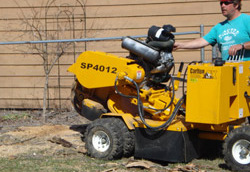 Anoka, MN Stump Grinding